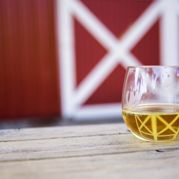 Cider Tasting at Berkley Fine Wine and Liquor!